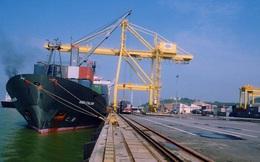 Cảng Đà Nẵng: Vừa lên UPCoM đã ngấp nghé chuyện niêm yết