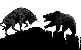 CTCK nhận định thị trường 26/10: Có thể trading ngắn hạn mạo hiểm với tỷ lệ nhỏ?