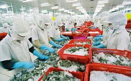 Tôm, cá Việt kiến nghị gỡ khó xuất khẩu hàng sang Trung Quốc