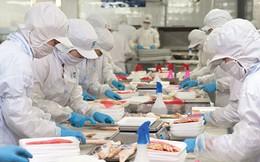 Đề nghị giảm thủ tục kiểm tra thủy sản nhập khẩu