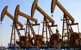 OPEC có thể sẽ đưa mức trần sản lượng khai thác dầu mới
