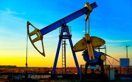 Giá dầu lại giảm sâu vì nhiều tín hiệu xấu