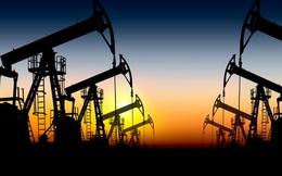 Giá dầu tiếp tục giảm sâu