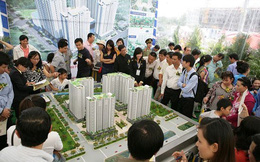 Địa ốc Hoàng Quân lại dự kiến phát hành thêm 205 triệu cổ phiếu