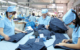 Việt Nam xuất siêu sang Ấn Độ nhiều mặt hàng có lợi thế