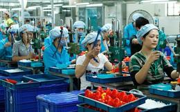 """""""Việt Nam không giàu để hỗ trợ hoành tráng cho doanh nghiệp nhỏ và vừa"""""""