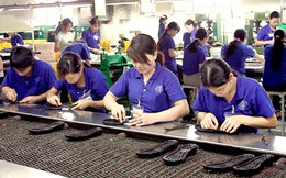 Doanh nghiệp Việt gấp rút chuẩn bị đón đầu FTA Việt Nam - EAEU