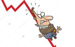 Tăng rất sốc, giảm rất sâu, những người mua đỉnh cổ phiếu đại lý ủy quyền lớn thứ 2 của Ford Việt Nam thua lỗ nặng nề