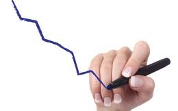 PITCO báo lỗ hơn 7 tỷ đồng năm 2015