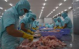 Xuất khẩu cá tra sang thị trường Trung Quốc tăng vọt