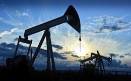 TCT Dung dịch khoan và Hóa phẩm Dầu khí (PVC): Quý 2 báo lỗ 16 tỷ đồng - Lỗ lớn nhất kể từ khi niêm yết