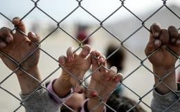 10.000 trẻ di cư biến mất bí ẩn ở châu Âu