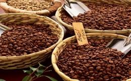 Sản lượng cà phê giảm 7% trong niên vụ 2016–2017