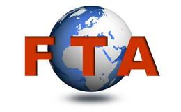 Triển vọng tham gia FTA thế hệ mới phụ thuộc vào nỗ lực của chúng ta