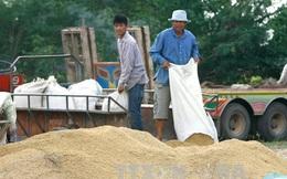 Thái Lan bán 755.000 tấn gạo dự trữ