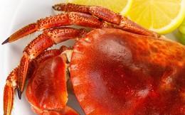 Những thực phẩm giàu vitamin B12 giúp tăng sức đề kháng