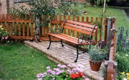 Mách bạn 10 cách để tạo một sân vườn đẹp mê ly khiến người khác phát thèm