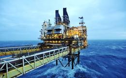 Giá dầu giảm, PVN tăng khai thác dầu khí trên 10%