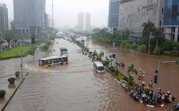 Thiệt hại nặng nề do bão: Công tác dự báo không sát thực tế?