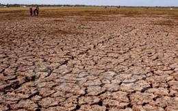 Hạn hán, xâm nhập mặn đã trầm trọng đến mức nào?