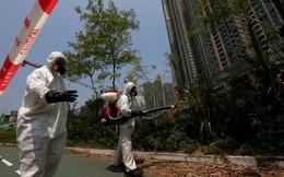 Hồng Kông - Trung tâm tài chính châu Á cuống cuồng đối phó virus Zika