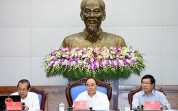 Thủ tướng khẳng định Chính phủ sẽ thực hiện lời hứa công bố nguyên nhân cá chết vào chiều nay