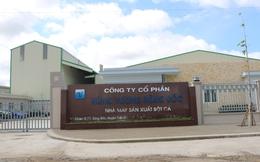 Hùng Vương vận hành nhà máy chế biến bột cá biển