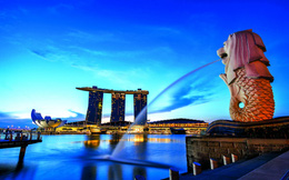 Start up Việt sang Singapore lập doanh nghiệp: 1 USD và 2 ngày