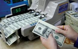 Tỷ giá USD/VND tăng trở lại