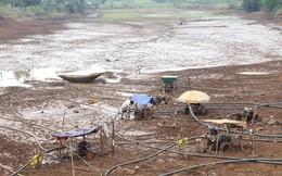 8.000 hộ dân tại Tây Nguyên thiếu nước sinh hoạt