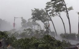 Đài Loan tan hoang sau siêu bão Meranti