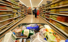 Sabeco, Masan Consumer, Vinasoy chuẩn bị lên sàn, thị trường sắp đón sóng FMCG?