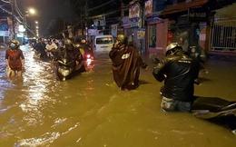 """TP.HCM ngập nặng: 29.000 tỷ đồng đổ """"xuống sông xuống biển""""?"""