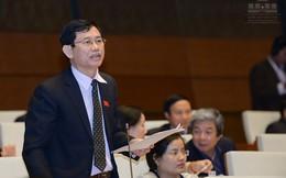 """Đại biểu Nguyễn Ngọc Phương: """"Ông Võ Kim Cự nói là làm đúng luật nhưng đó là cá nhân ông ấy nói, phải thẩm tra"""""""