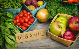 DN dè chừng đầu tư vào nông nghiệp hữu cơ: Vì sao?