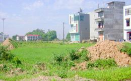 Thu về 100 tỉ đồng từ bán đấu giá 37 thửa đất tại quận Hà Đông