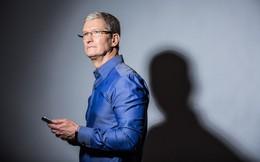 5 năm Tim Cook làm CEO Apple: Cô đơn và cay đắng