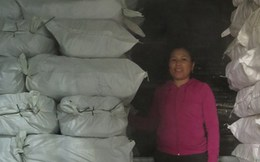 Quảng Bình tồn kho hàng nghìn tấn cá
