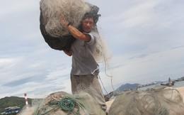 Nước biển miền Trung đạt quy chuẩn để tắm, nuôi thủy sản