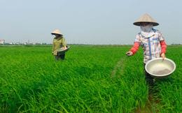 Hóa chất Lâm Thao (LAS) ước lãi 38 tỷ đồng quý 1/2016