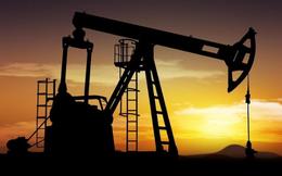 Petrosetco Distribution chốt quyền nhận cổ tức 25% bằng tiền