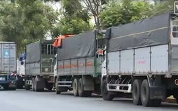 Hàng trăm xe tải ùn ứ đợi hàng trước nhà máy thép
