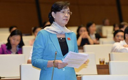 Ngân sách Tp.HCM và phiên thảo luận đặc biệt tại nghị trường