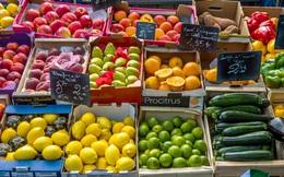 EU cảnh báo hàm lượng thuốc bảo vệ thực vật quá mức cho phép
