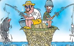 """Cá chết miền Trung, giật mình câu nói """"nghèo bình yên hơn giàu không an toàn"""""""