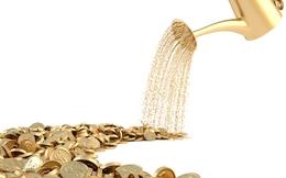 Thị giá dưới 10 nghìn đồng suốt hơn 2 tháng, Bamboo Capital vẫn chốt quyền mua bằng mệnh giá tỷ lệ 1:1,5