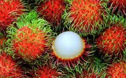 Thủ đoạn lừa tiền của các doanh nghiệp nhập khẩu trái cây từ UAE