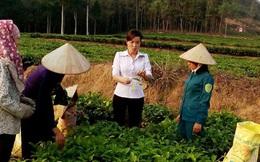 245 cán bộ nguồn ở Hà Nội về làm việc tại các xã, phường