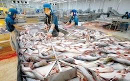 Thủy sản xuất khẩu của Việt Nam bị trả về chỉ đứng sau Trung Quốc