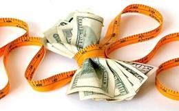 Đồng tiền nước nào có khả năng ảnh hưởng mạnh nhất đến cơ chế tỷ giá mới?